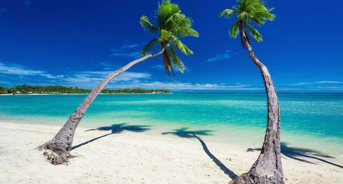 fiji-palmtrees-beach-cover