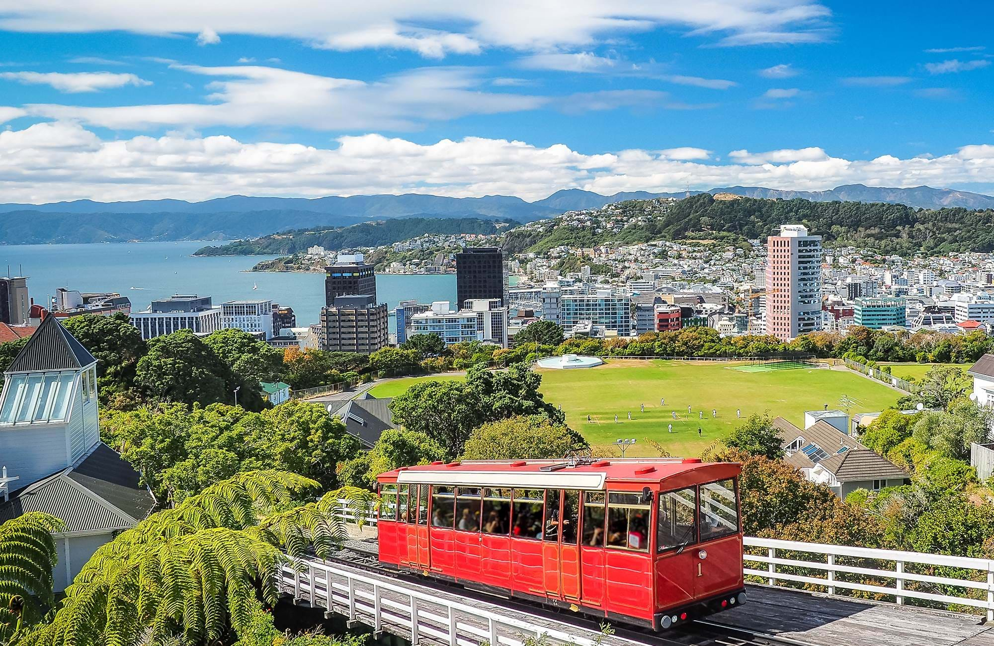 new-zealand-wellington-city-view-day-time