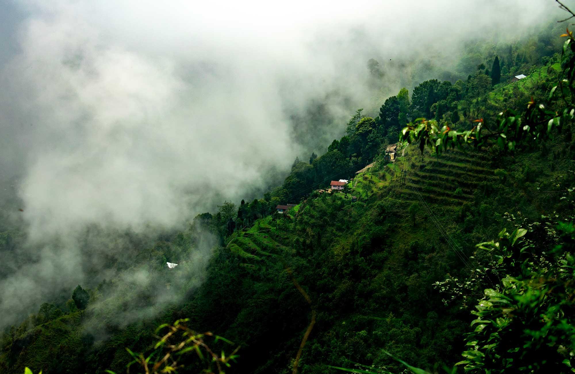 Gröndskande landskap längs Sonada Road i Derjeeling i Indien.